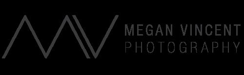 MEGANV-logo-horizontal-500px